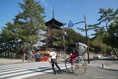Nara-Snapshot (janetcmt's pictures) Tags: japan  nara  sel1670z