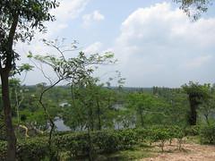 STC_6813.jpg (Kuruman) Tags: lake sylhet bangladesh srimangal