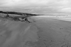 Shifting Sands,Sands of St Cyrus,St Cyrus National Nature Reserve_jan 16_714 (Alan Longmuir.) Tags: monochrome aberdeenshire grampian blowingsand stcyrus shiftingsands sandsofstcyrus stcyrusnationalnaturereserve