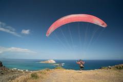 Andrew_Zoechbauer_FirstFlightMPUNewYear_DSC08640 (azoech) Tags: hawaii paragliding makapuu