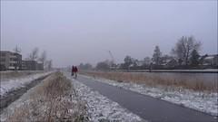 Straatsen - schaatsen op straat (neeltjevanderweide) Tags: winter iceskating fryslan leeuwarden schaatsen speedskating vorst natuurijs vanharinxmakanaal roadskating straatsen