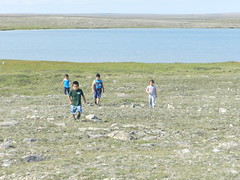 Going swimming at Long Point August 2015 09 (cambridgebayweather) Tags: swimming nunavut cambridgebay arcticocean
