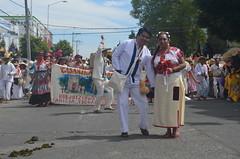 DSC_0085 (xavo_rob) Tags: mxico nikon colores carnaval puebla airelibre huejotzingo carnavaldehuejotzingo xavorob nikond5100