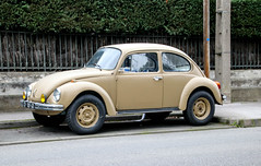 Beetle (xwattez) Tags: street old france car volkswagen automobile beetle voiture german transports toulouse rue ancienne coccinelle 2016 vhicule allemande