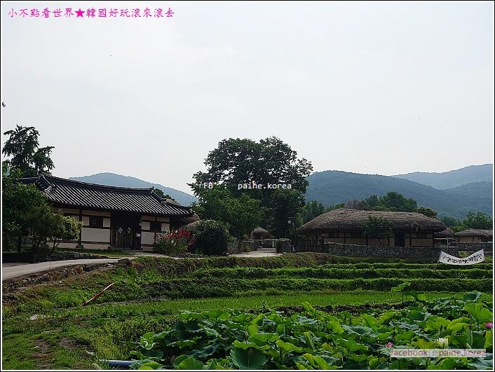 牙山外巖民俗村 (17).JPG
