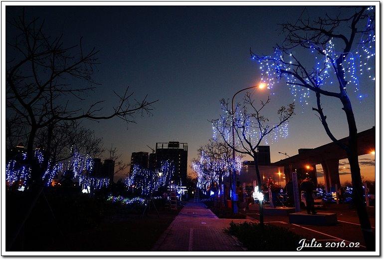 台灣燈會 (14)