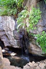 South Africa_040 (jjay69) Tags: vacation holiday hot water southafrica roadtrip fresh ontheroad source freshwater kuruman eyeofkuruman