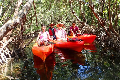 3_4_16 Kayak Tour Sarasota FL 05