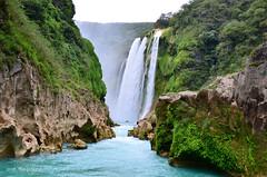 Cascada de Tamul, Huasteca Potosina (Moctezuma Tx) Tags: azul mexico cascada huasteca tamul potosina