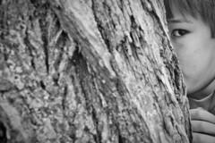 Behind the Elm Tree (brucetopher) Tags: flickrfriday hidden elm tree bark oldandyoung young youth boy age hideandseek hide seek elmtree hiding look glare see seeing black white blackandwhite bw blackwhite monochrome
