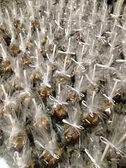 Cake Pops (DOCE'ARTE BRASIL chocolateria artesanal) Tags: chdebeb cakepop