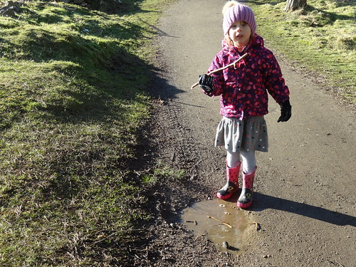 Hadow Country Park Feb16 (20)