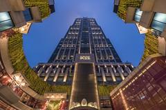 *K11 Shanghai @ blue hour* (Albert Wirtz @ Landscape and Nature Photography) Tags: china skyscraper shanghai shoppingmall bluehour hochhaus blauestunde weitwinkel huaihaipark k11 explored d810 inexplore nikkor1835 nikond810 albertwirtz