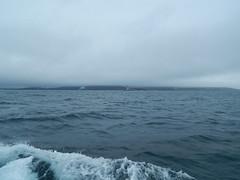 Plymouth-201506-43-FogBank-OverBovisandAndBreakwater (Tony J Gilbert) Tags: macro marine underwater plymouth diving scylla jameseaganlayne nikond300 handdeeps wwwdivingplymouthcom ceeking hilseapointrocks