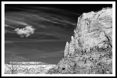 Canyon with Cloud (brev99) Tags: blackandwhite cloud utah border canyon zionnationalpark colorefex ononesoftware nikdfine sigma1770os perfecteffects9 dxofilmpack5