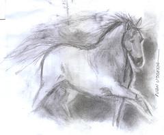 caballo a lpiz (ivanutrera) Tags: horse animal pencil caballo sketch drawing draw dibujo cuadrupedo dibujoalpiz