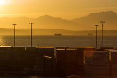 Gold (writing with light 2422 [NOT PRO]) Tags: sunset gold pugetsound safecofield ferries sonya77 richborder