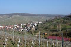 DSC_9329_20160320_6937_DxO_Struempfelbach (krixlibux) Tags: germany strümpfelbach