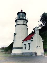Pacific Northwest2015-34 (Felson.) Tags: trip travel usa lighthouse holiday oregon faro honeymoon pacificnorthwest pnw viaggio vacanza cascadia heceta hecetahead