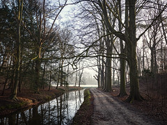 Take a walk with me (Paul Beentjes) Tags: trees cold netherlands reflections early bomen estate path pad nederland brook sloot koud overveen vroeg landgoed reflecties elswout
