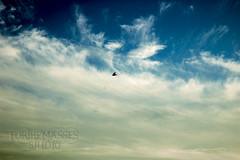 BLH11 (forthemassesstudio) Tags: ocean sea sun lighthouse texture beach nature lines birds clouds boat newjersey fishing patterns nj wanderlust explore shore barnegat jerseyshore seashore oceancounty wander ocnj opensea