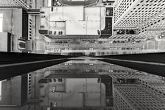 Don't look down.  #Toledo #BlackAndWhite #Reflection #Rooftop #Lookdown #CityStreets #Urban #UrbanExplorer #Urbex #Abandoned #ToledoOhio #Ohio #ChasingRooftops (kallyone) Tags: ohio urban blackandwhite reflection abandoned rooftop lookdown toledo citystreets urbex toledoohio urbanexplorer chasingrooftops
