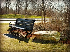 """The only place the mind will ever find peace is inside the silence of the heart. That's where you need to go."""" - explored (Trinimusic2008 -blessings) Tags: trinimusic2008 judymeikle nature bench hbm humberbaypark sun light outdoors toronto to ontario canada shadows trees rock explored panasonicdmczs27"""