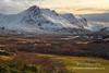 Loyal Pastures (Shuggie!!) Tags: trees winter snow mountains landscape scotland highlands williams hills karl pastures sutherland hdr eveninglight gorse zenfolio karlwilliams