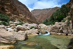 Wadi Shab (Fabio Bianchi 83) Tags: travel water rock asia hiking palm oman roccia acqua wadi palme viaggio escursionismo wadishab