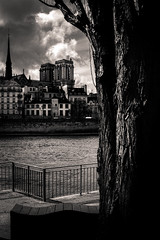 Au loin (LoKee Photo) Tags: white black paris key low sigma notre dame merrill dp2 lokee