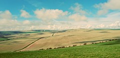 Downland (ephemerol) Tags: clouds rural downs sussex shadows south fields southdowns bucolic