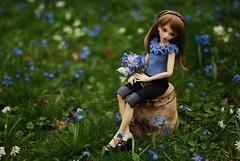 Sweet April Flowers of Mine (Red Ribboned Dolls) Tags: frozen waves redribbon chloe bjd fairyland abjd auri msd mnf minifee redribboneddolls