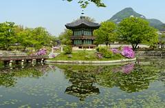 Hwangwonjeong Pavilion (frawolf77) Tags: flowers panorama lake colors garden pagoda spring ancient asia south artificial palace korea seoul dynasty pavillion gyeongbokgung hwangwonjeong