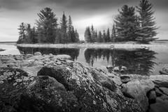 Ottawa River at Morris Island, Ontario. (pjr100) Tags: trees blackandwhite ontario river landscape island spring rocks ottawa morris
