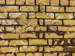 Details (tobias.berchtold) Tags: detail brick yellow wall lumix minimal panasonic gelb minimalism g3 minimalistic minimalist panasoniclumix lumixg3 panasoniclumixg3