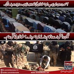 #ISIS #DAESH #MuslimKilling #ShiaKilling (ShiiteMedia) Tags: pakistan isis shiite      shianews     shiagenocide shiakilling     daesh shiitemedia shiapakistan mediashiitenews    shiakillingshia      muslimkilling