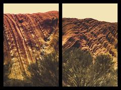 IMG_1009 (gaujourfrancoise) Tags: rock australia unescoworldheritagesite sacred uluru aboriginal monolith redcenter sacr northernterritory australie ayersrock anangu inselberg gaujour