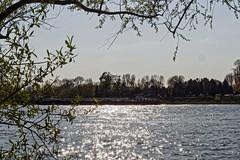 Rhein in Benrath 05.2016 (KL57Foto) Tags: pen germany deutschland olympus nrw fluss düsseldorf rhine rhein strom rheinland rhineland rheinufer benrath 2016 landeshauptstadt pm2 kl57foto