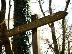 Signs of confusion (Alan FEO2) Tags: wood signs point outdoors shropshire hill route wrekin m54 2oef