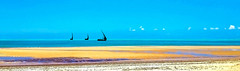 Dhow Mozambique (david schweitzer) Tags: seascape dhow turquoise panorama golden sand silhouettes deserted sandy beach tidalflats bazarutoarchipelago indianocean coast mozambique waterscape boats explore davidschweitzer documentaryphotography