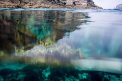 0801-11.jpg (d3_plus) Tags: sea sky fish beach japan scenery underwater calendar diving snorkeling  shizuoka    apnea izu j4  waterproofcase    skindiving minamiizu        nikon1 hirizo  1030mm  nakagi  1  nikon1j4 1nikkorvr1030mmf3556pdzoom beachhirizo misakafishingport  1030mmpd nikonwpn3 wpn3