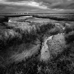Spartina Marsh (catkin314) Tags: sky blackandwhite bw clouds creek southcoast southamptonwater