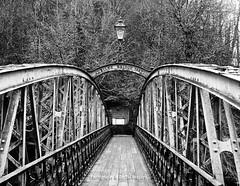 JUBILEE BRIDGE (David Preston Photography & Digital Imagery) Tags: uk england monochrome mono blackwhite derbyshire jubileebridge matlockbath thepeakdistrict