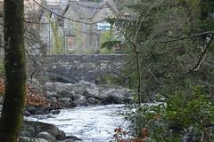 DSC_0113 (Lord Edam) Tags: bridge winter nature water grass wales river stones walk wildlife betwsycoed conwy afon llugwy pontypair