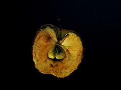 halber Apfel (ni22co) Tags: apple mar manzana appel elma apfel almas pomme mela jablko jabuka omena epli
