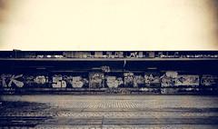 5D (Silke Klimesch) Tags: white black berlin abandoned industry station pen eisenbahn railway olympus goods ruine architcture architektur industrie verlassen shutdown stillgelegt 17mm schwarzweis gterbahnhof mzuiko epl3
