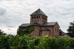 IMG_0658 (christianbaier88) Tags: canon eos schloss turm rheingau weinberge johannisberg