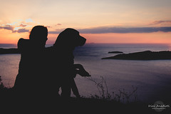 Buddha sunset (Irini Anadioti) Tags: sunset sea rescue woman dog pet silhouette rott rottweiler athens greece attica rescuedog petphotography vouliagmeni adopteddog touchinghands