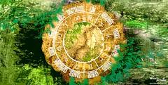 12 Horoscope Houses (wearandcheer) Tags: horoscope southernhemisphere northernhemisphere hemispheres easternhemisphere thequadrant westernhemisphere historyofastrology 12horoscopehouses astrologicalsignsandlovehoroscope historyofhoroscope housesofthehoroscope theaccentuation