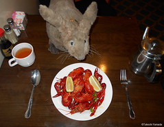 Dr. Takeshi Yamada and Seara (Coney Island sea rabbit) at the Seaport Buffet Chinese restaurant in Brooklyn, NY on January 4, 2016.  20160104Mon DSCN3202=C1 (searabbits23) Tags: nyc ny newyork sexy celebrity art fashion animal brooklyn painting asian coneyisland japanese star tv google king artist dragon god manhattan wildlife famous gothic goth chinese performance pop taxidermy cnn tuxedo bikini portraiture tophat unitednations playboy entertainer takeshi samurai genius donaldtrump mermaid amc johnnydepp mardigras salvadordali unicorn billclinton hillaryclinton billgates aol vangogh curiosities sideshow jeffkoons globalwarming takashimurakami pablopicasso steampunk yamada damienhirst cryptozoology freakshow barackobama seara immortalized takeshiyamada museumofworldwonders roguetaxidermy searabbit ladygaga climategate minnesotaassociationofroguetaxidermists